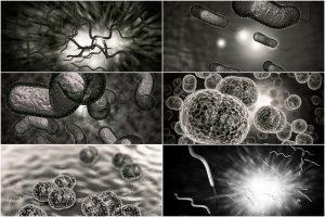 Portadores silenciosos de estafilococo resistente a la meticilina