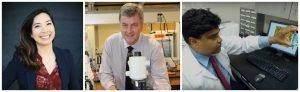 Desinfectante a base de nanopartículas